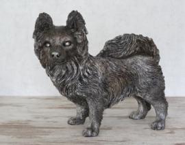 asbeeld/urn Chihuahua langhaar 24 cm