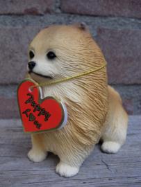 beeldje Dwergkeeshond pup