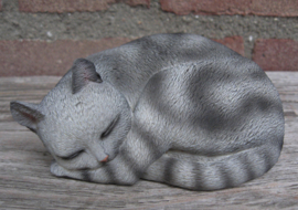 kattenbeeldje 'pleasant dreams' grijs tabby