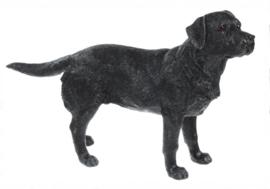 beeldje Labrador zwart staand