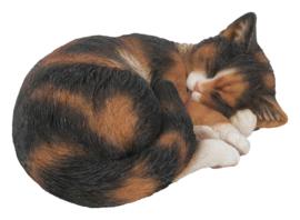 beeld/asbeeld/urn Kat slapend  lapje