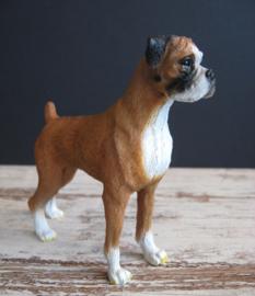 beeldje Boxer tan-wit staand
