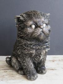 asbeeldje/kattenurn Kitten