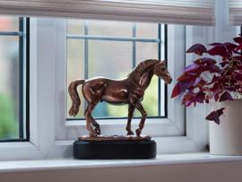paardenurn/asbeeld 'Champion'