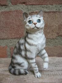 beeldje zittende kat grijs tabby