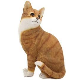 kattenbeeldje rood-wit zittend