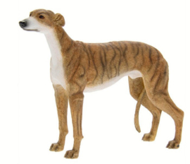 beeldje Greyhound brindle