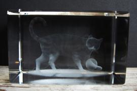 laserblokje/glasblokje kat