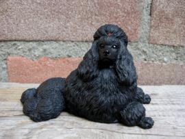 beeldje Poedel liggend zwart
