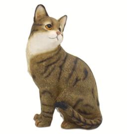 kattenbeeldje bruin tabby zittend