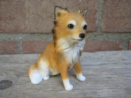 beeldje Chihuahua langhaar zittend
