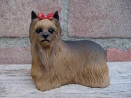 beeldje Yorkshire Terrier staand