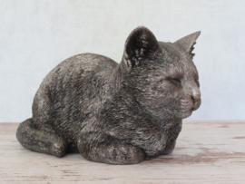 asbeeld/kattenurn Kat dromend klein