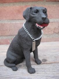 beeldje Labrador chocolate met bal