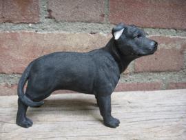beeldje Staffordshire Bull Terriër zwart