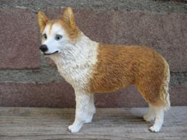 beeldje Husky rood-wit staand