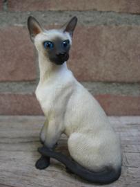 beeldje zittende Siamese kat