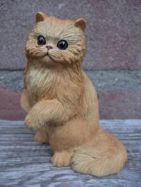 beeldje rode Perzische kat/Pers