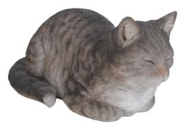 beeld/asbeeld/urn Kat dromend grijs