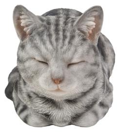beeld/asbeeld/urn Kat dromend grijs gemarmerd