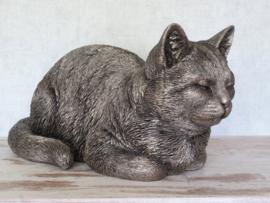 asbeeld/kattenurn Kat dromend groot