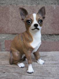 beeldje Chihuahua korthaar brindle
