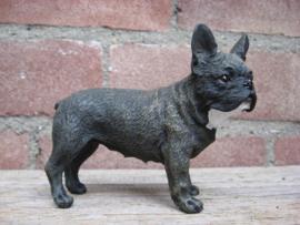 beeldje Franse Bulldog brindle zwart-bruin