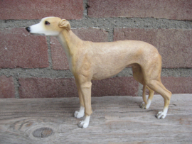 beeldje Greyhound tan-wit