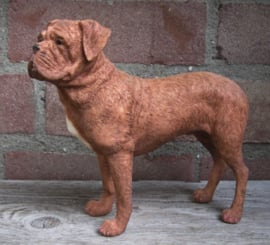 beeldje Bordeaux Dog