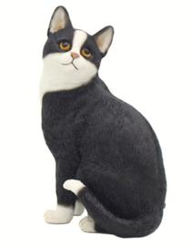 kattenbeeldje zwart-wit zittend