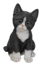 beeldje/asbeeldje/urn Kat zittend zwart-wit