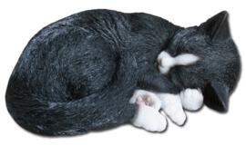 beeld/asbeeld/urn Kat slapend zwart-wit