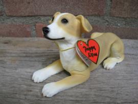 beeldje Greyhound puppy tan-wit