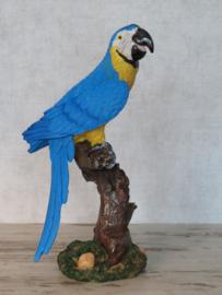 beeldje Papegaai blauw