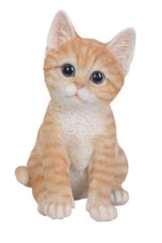 beeldje/asbeeldje/urn Kat zittend rood