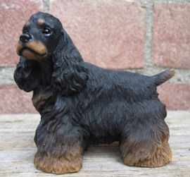 beeldje Amerikaanse Cocker spaniel black & tan