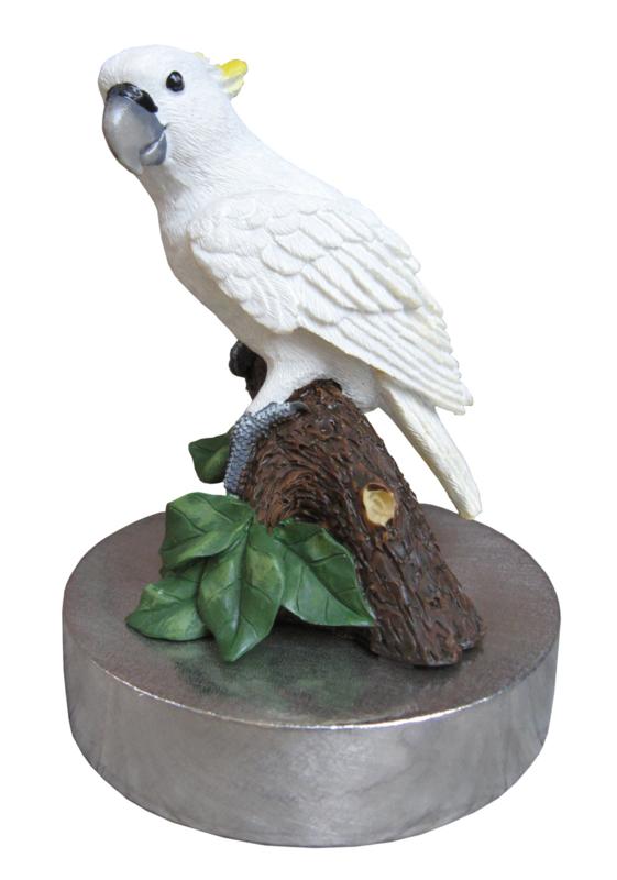 zilvertinnen urn kaketoe