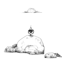 Connemara met vogel op een steen - kunstprint