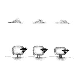 Drie Connemara's op een rij - kunstprint