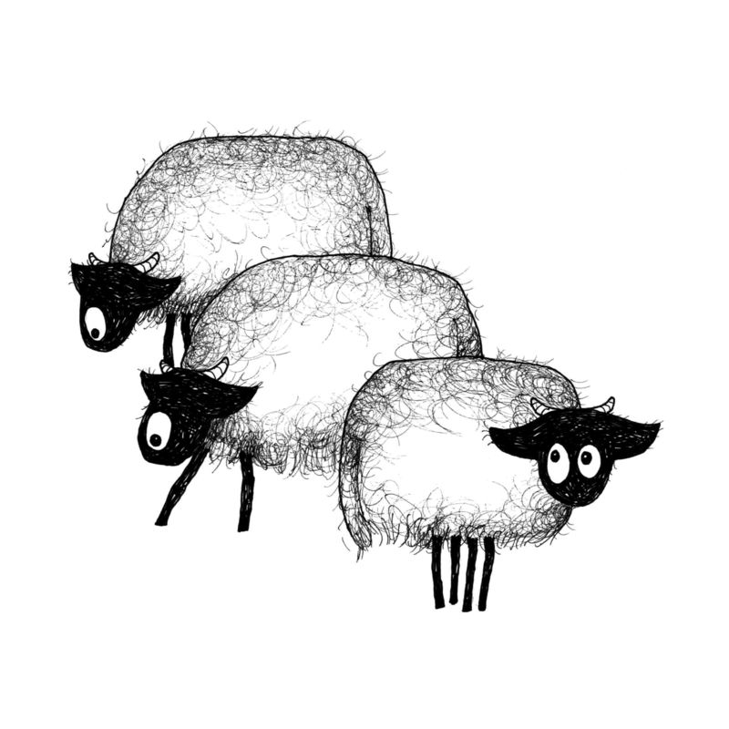 Drie Connemara's - kunstprint