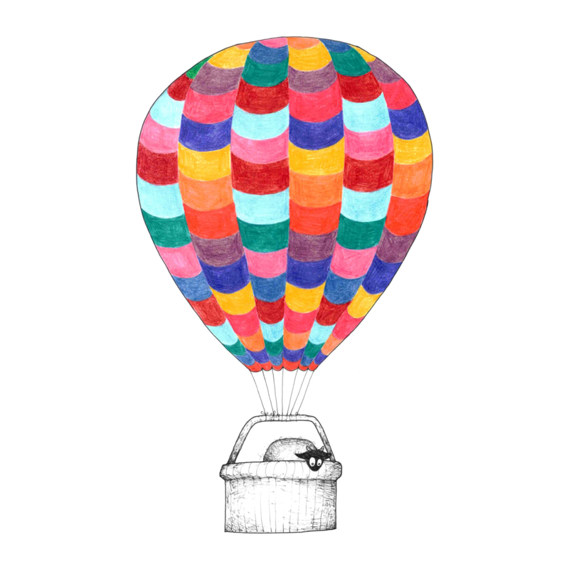 Connemara in een luchtballon - kunstprint