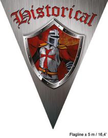 Vlaggenlijn Ridder / Historical - 5 meter (84391E)