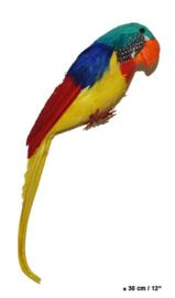 Papegaai 30 cm (50140E)