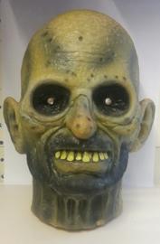 Zombie hoofd met lichtjes (653327GF)