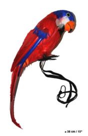 Papegaai 38 cm (50105E)
