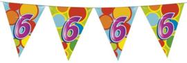 Vlaggenlijn ballonnen 6  (405506H)