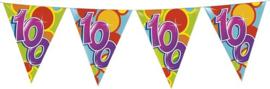 Vlaggenlijn ballonnen 100 (10 meter)