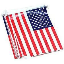 Vlaggenlijn USA - 5 meter - vierkant (01552MG)