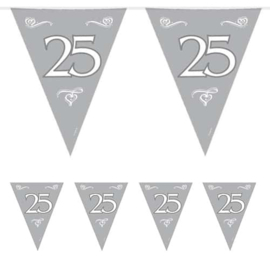 Vlaggenlijn zilver 25 - 10 meter (07451F)