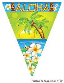 Vlaggenlijn Aloha Hawaii - 5 meter (62561E)